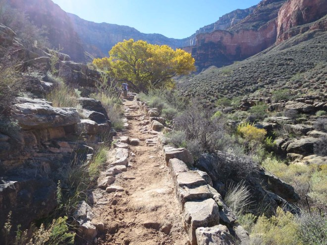 Bright Angel Trail atop the Tapeats Sandstone